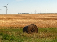hay and wind