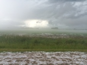 june storm