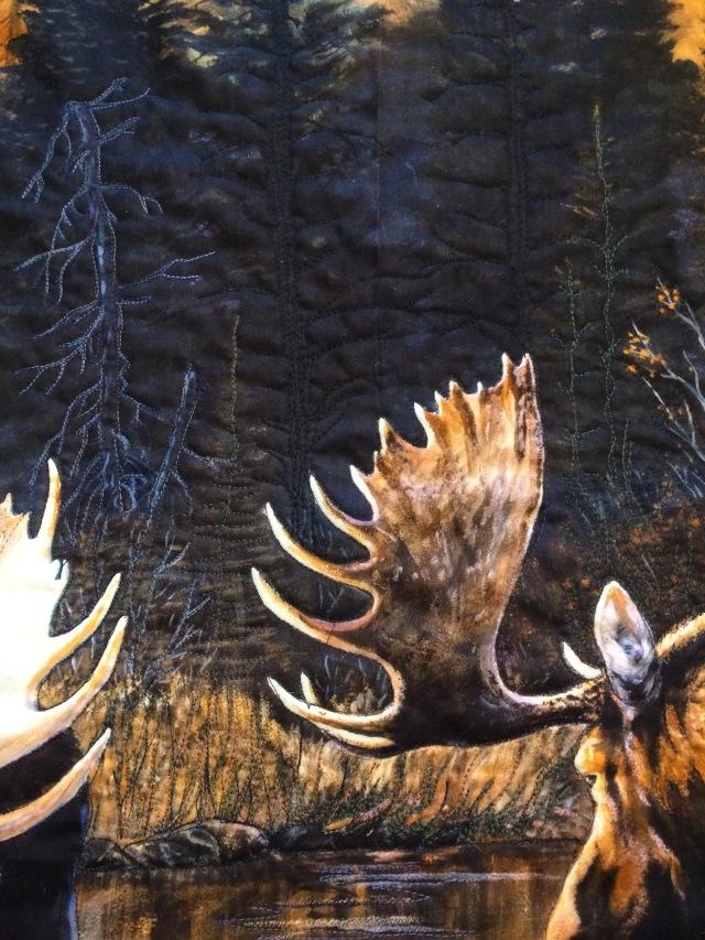 moose background